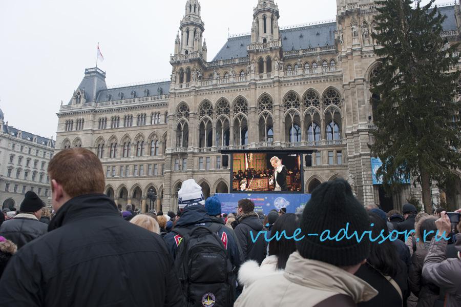 концерт венской филармонии